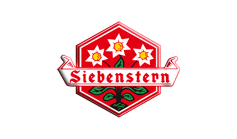 Partner-Siebenstern
